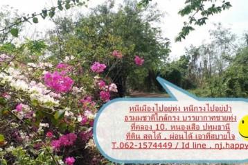 ที่ดินแปลงสวย เลียบคลอง 10 กม.3 หนองเสือ ปทุมธานี ที่ดินสวยแหล่งธรรมชาติ T.062-1574449