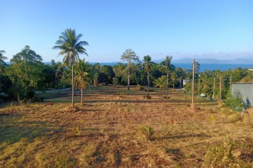เกาะสมุย 11ไร่ใกล้หาดบางปอ 500เมตร