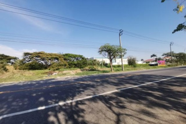 ขาย ที่ดิน ริมถนน คู่ขนานกาญจนาภิเษก ประเวศ 13 ไร่ 2 งาน 29 ตร.วา เหมาะทำโครงการจัดสรร