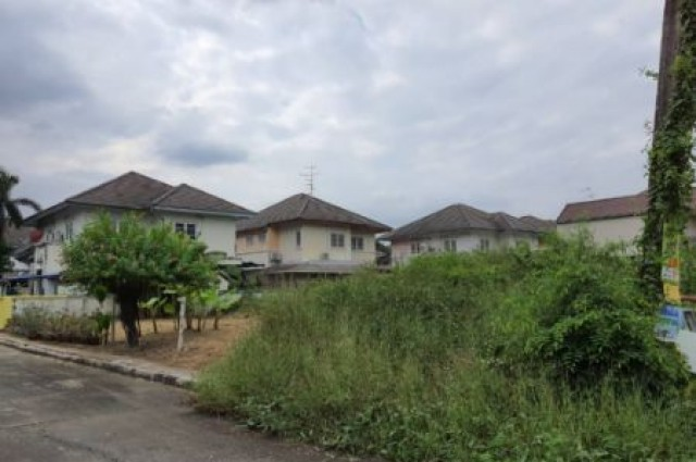 ขายที่ดินแปลงใหญ่สุด ในหมู่บ้านกาญจน์เพชร 2 งาน 1 ตร.วา รูปแปลงสี่เหลี่ยมจตุรัส