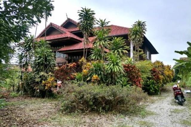 ขาย บ้านเดี่ยว บ้านสวนทรงไทยพร้อมลำไย200ต้นบ้านทรงไทยพร้อมสวนลำไย 300 ตรม. 5 ไร่ 1 งาน 84 ตร.วา ร่มรื่นเป็นส่วนตัว