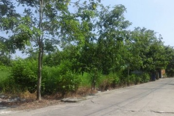 ขายที่ดิน 54 ตร.ว หมู่บ้านธัญญาพร 2 คลอง 8 อ.ธัญบุรี ปทุมธานี