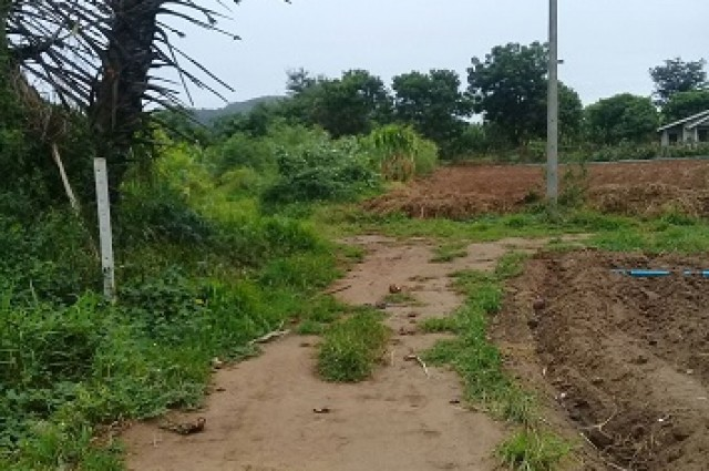 ขายที่ดิน 6ไร่ 3 งาน 75 ตารางวา น้ำไฟเข้าถึง บรรยากาศดี ท่าม่วง กาญจนบุรี