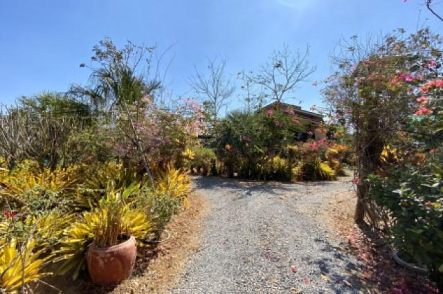 ที่ดินพร้อมบ้าน YE-79 บ้านฝาง ขอนแก่น พื้นที่ 4 ไร่ 2 งาน Ban Fang Khonkaen